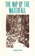 book cover image for book entitled Nap by the WaterFall by Howard Nelson