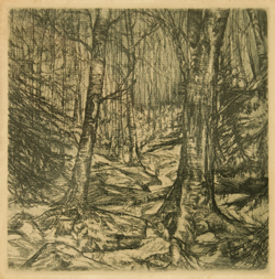 cd cover image for recording entitled The Nap by the Waterfall by Howard Nelson